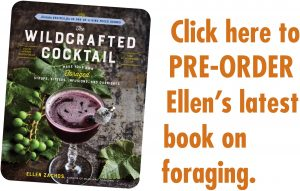 wildcrafted cocktail ellen zachos book order amazon
