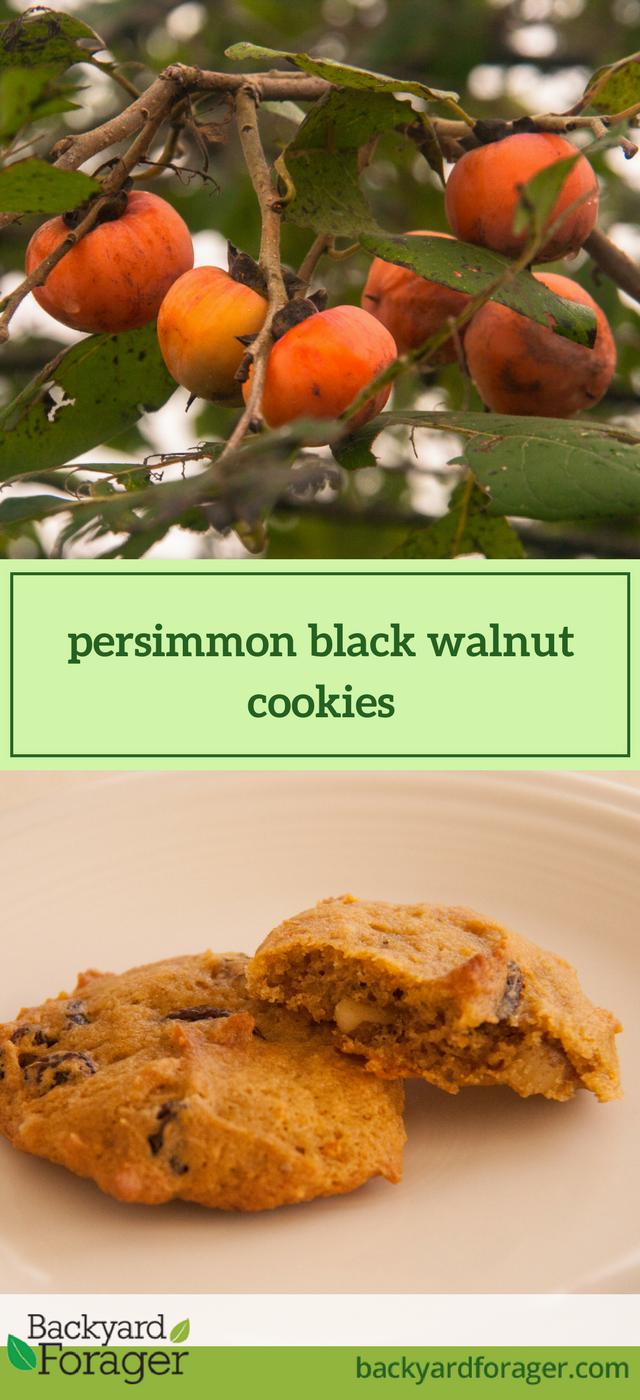 persimmon black walnut cookies