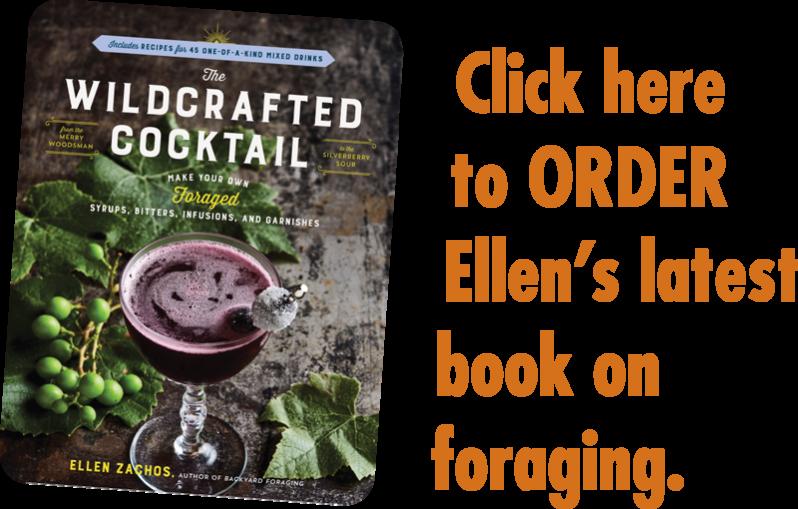 The Wildcrafted Cocktail by Ellen Zachos
