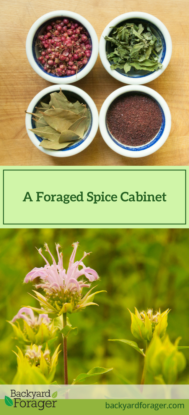 your foraged spice cabinet
