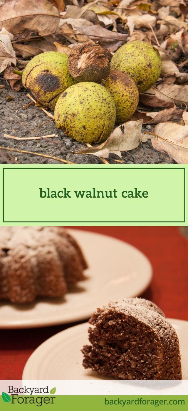 Black Walnut Bundt Cake