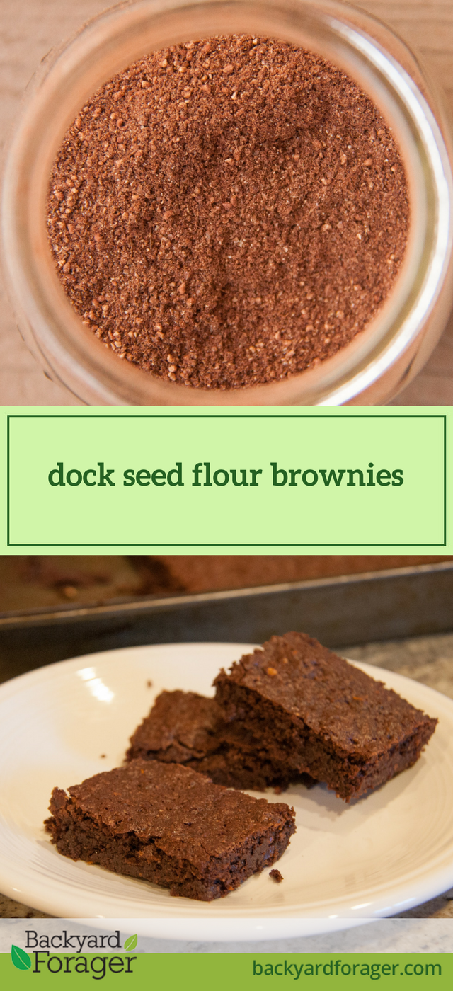 dock flour brownies
