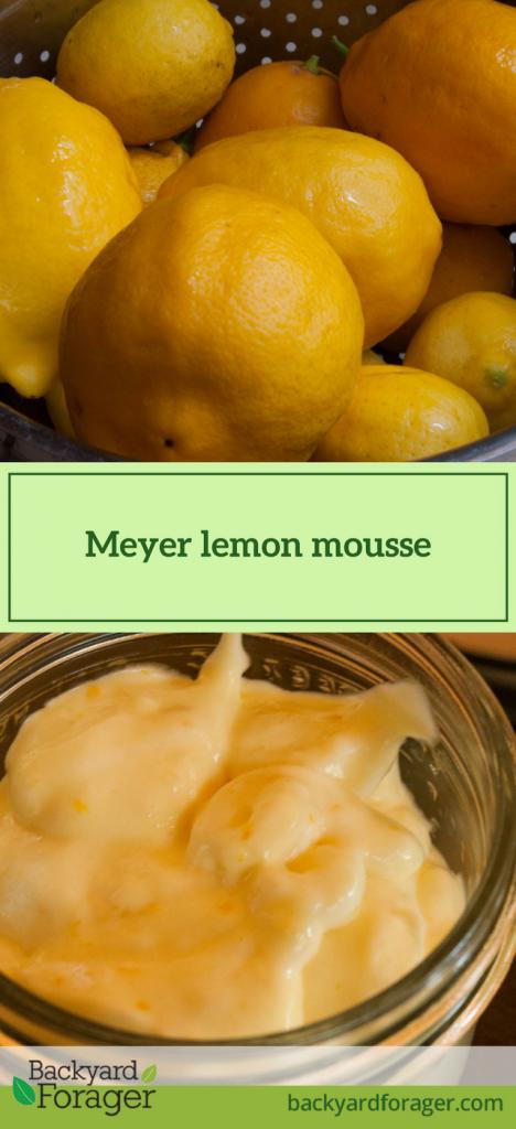 Meyer lemon mousse