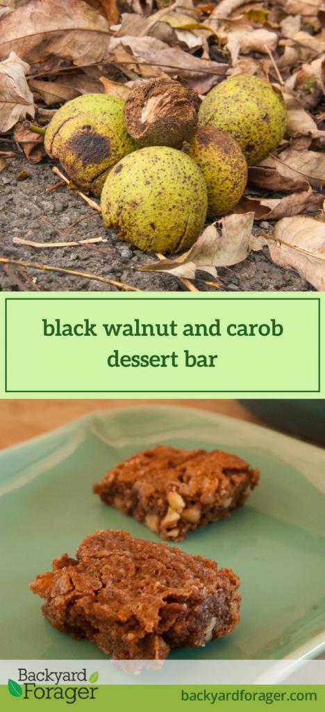 black walnut carob dessert bar