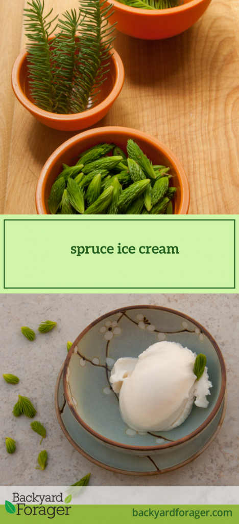 spruce ice cream