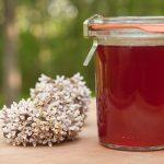 milkweed flower jelly