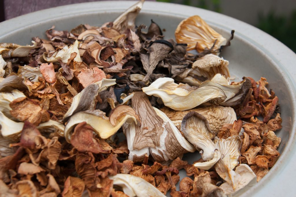 how to preserve your mushroom harvest