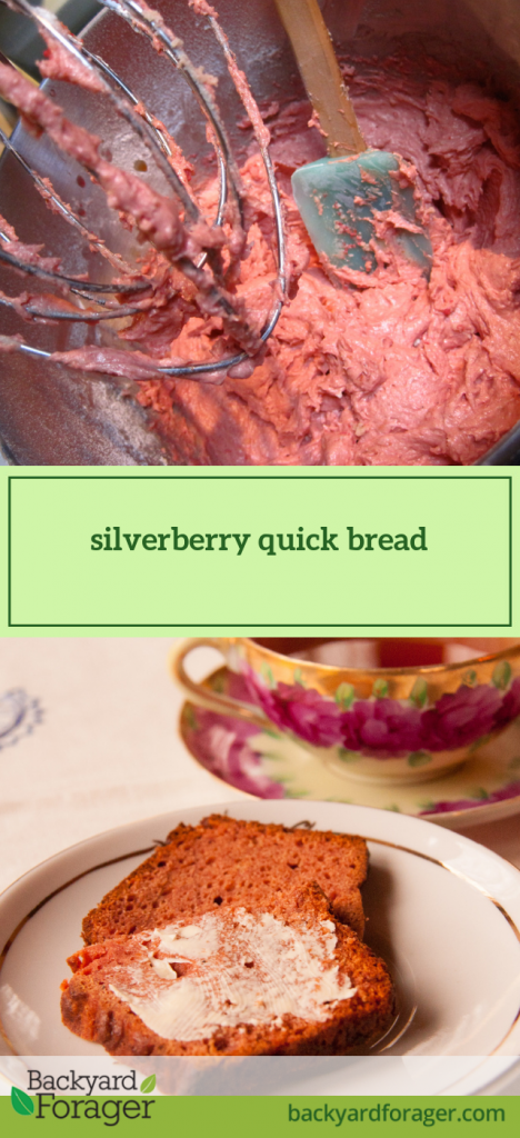 silverberry quick bread