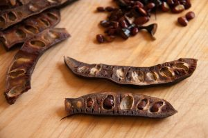 remove seeds from the carob pods