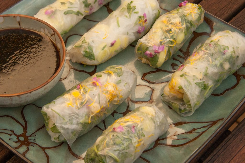 foraged spring rolls